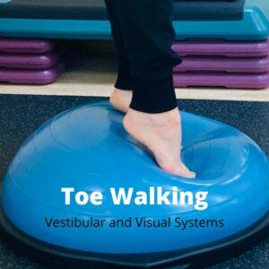 Toe Walking - Vestibular System